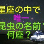 【クイズ】全天88星座の中で,唯一、昆虫の名前がつけられているのは何座でしょう?(10問)